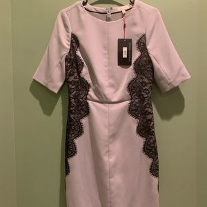 NWT The Limited Dress Size 2